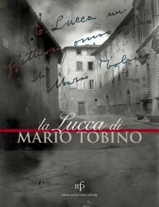 Lucca vista da Tobino